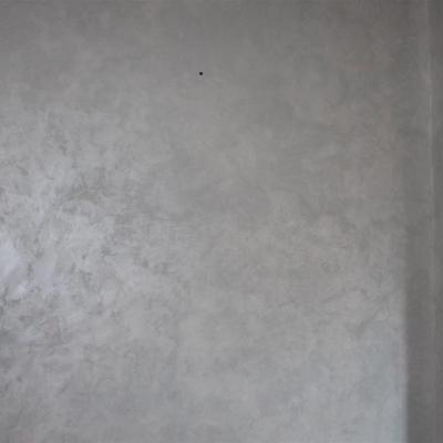 img-1745C5A7B6B6-0DE9-CE18-5E47-F0BADD615475.jpg